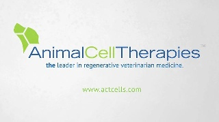Animal Cell Therapies Appoints Furcht to Board of Directors