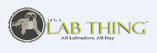 Thousands of Labrador Retriever Fans Join New Website and Community