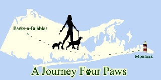 Journey For Paws Raises Thousands for Long Island Organizations