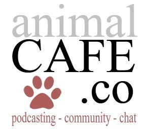 Steve Dale Joins the Team at Animal Café