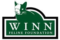 Dr. Gookin Wins Excellence in Feline Research Award