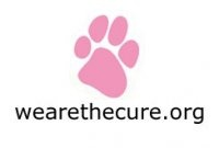 The National Canine Cancer Foundation and Chase Away K9 Cancer team up for Canine Cancer research