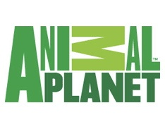 Animal Planet Debuts Show about Pet Taxidermy
