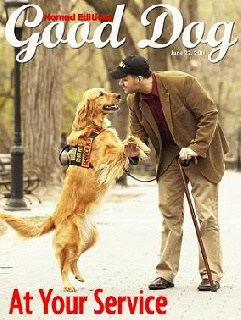 Good Dog: a New Digital Magazine