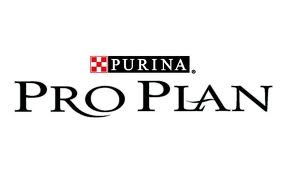 Latest Purina Campaign Launches During 136th Westminster Kennel Club All Breed Dog Show