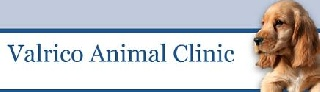 Florida Animal Clinic Expands to include Luxury Pet Hotel