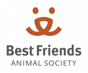 Paul Mitchell Future Professionals Bring Biggest Group of Volunteers to Best Friends Animal Sanctuary