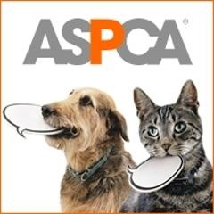 Former U.S. Attorney Mary Jo White Elected to ASPCA Chair