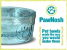 PawNosh Glass Pet Food Bowls: An Innovative New Kickstarter Campaign