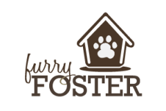 """Furry & Fabulous"" Charity Pet Fashion Show Starring 100 Adoptable Dogs"