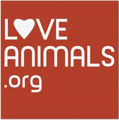 Halo, Purely for Pets Becomes Founding Sponsor of Animal Crowdfunding Site LoveAnimals.org