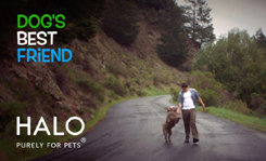 Halo, Purely for Pets Releases Second #RescueFilm Featuring The Olate Dogs
