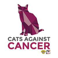 Pets Helping People – Cats Against Cancer Has Raised Nearly $8 Million