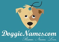 DoggieNames.com Calls for Moratorium on Dog Name Bella After Revealing 2015 World's Most Popular Dog Names