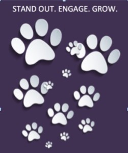 Purple white paws jpg 294 x 352