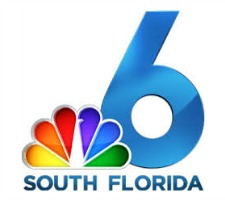 Miami South Florida Logo Box
