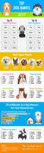 2017-top-dog-names