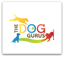The Dog Gurus Offer New Launch Formula Program for Pet Care Businesses
