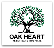 "Grand Opening Celebration: Oak Heart Veterinary Hospital at Dixie Trail to Host a  Summer Block ""Pawty"""
