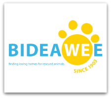 Bideawee to Host 37th Annual Pet Memorial Day Event in Wantagh